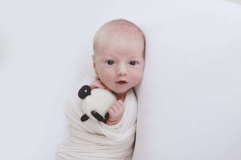 newborn photographer centurion